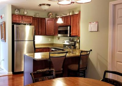 Laconia Condo/Townhouse For Sale: 115 Shane Way #2