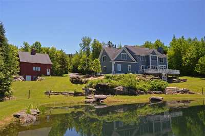 Stowe Single Family Home For Sale: 647 Putnam Forest Road #4