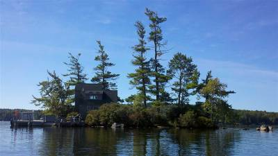 Carroll County Single Family Home For Sale: 1 Tip Island