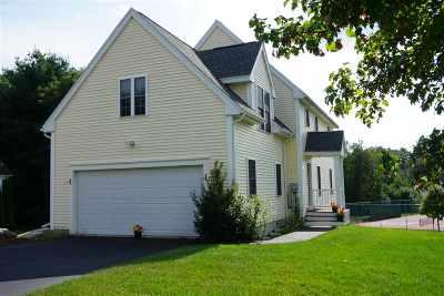 Hudson Single Family Home For Sale: 79 Barbara Lane #97