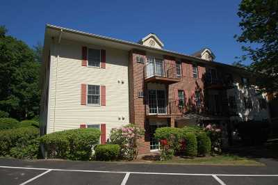 Laconia Single Family Home For Sale: 130 Endicott N Street #219