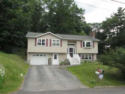 Nashua Single Family Home For Sale: 9 Stanley Lane