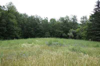 Bristol Residential Lots & Land For Sale: Meehan Road #North Lo