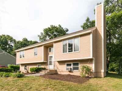 Hudson Single Family Home For Sale: 11 B Rangers Drive #B