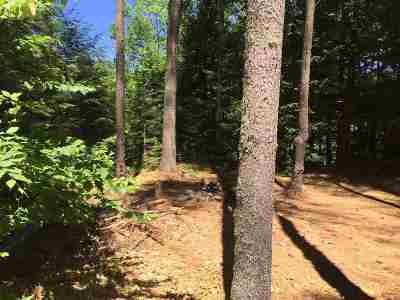 Woodstock  Residential Lots & Land For Sale: 558 Daniel Webster Highway