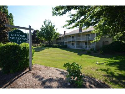 Gilford Condo/Townhouse For Sale: 336 Intervale Road #B1