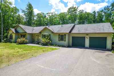 Gilford Single Family Home For Sale: 93 Terrace Hill Road