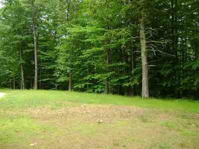 Moultonborough Residential Lots & Land For Sale: Casanna Street