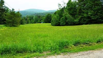 Chittenden County Residential Lots & Land For Sale: 687 East Street #Land