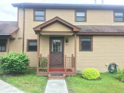 Morristown VT Condo/Townhouse For Sale: $138,000