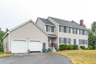 Milford Single Family Home Active Under Contract: 41 Christmas Tree Lane