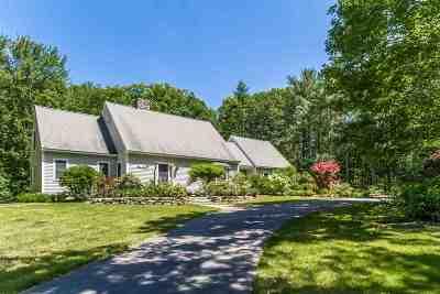 Henniker Single Family Home For Sale: 43 Plummer Hill Road