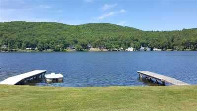 Poultney Single Family Home For Sale: 461 Stonehenge Road