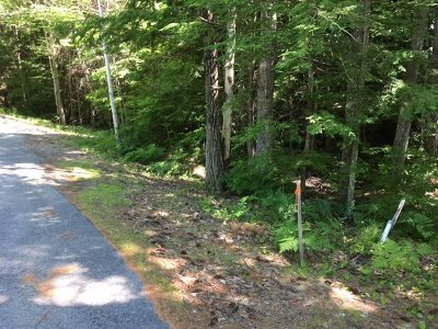Meredith Residential Lots & Land For Sale: Red Pine Road #Lot 66