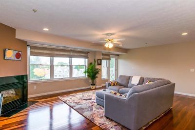 Nashua Condo/Townhouse For Sale: 14 Mountain Laurels Drive #202