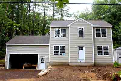 Nashua Single Family Home For Sale: 25a New Searles Road