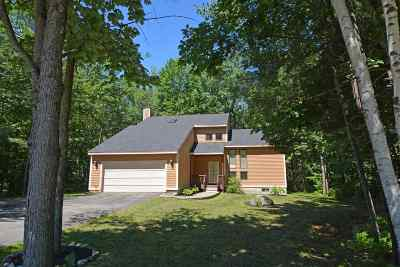 Gilford Single Family Home For Sale: 38 Sanborn Road
