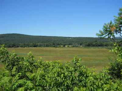 Rutland, Rutland City Residential Lots & Land For Sale: 4253 Dyer Road