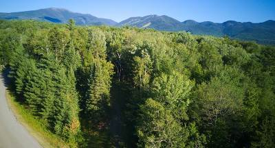 Franconia Residential Lots & Land For Sale: 100 Old County Road