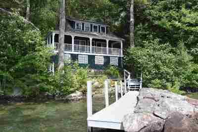 Belknap County Single Family Home For Sale: 7 Lockes Island