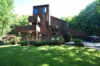 Hinesburg Single Family Home For Sale: 87 Craigy Lane