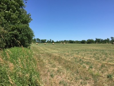 Residential Lots & Land For Sale: Watch Point Road Road