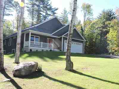 Laconia Single Family Home For Sale: 890 Watson Road