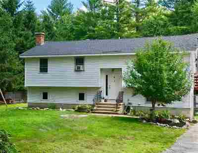 Londonderry Single Family Home For Sale: 354 Mammoth Road