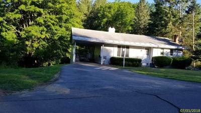 Belknap County Single Family Home For Sale: 22 Cottonwood Avenue