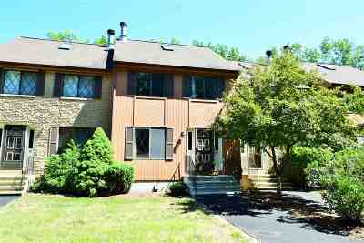 Merrimack Condo/Townhouse For Sale: 44 Winrow Drive