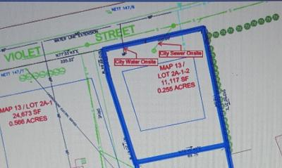 Goffstown Residential Lots & Land For Sale: Lot 2a-1-2 Violet Street