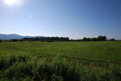Pittsford Residential Lots & Land For Sale: 4875 Us 7 Route