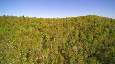 Chittenden County Residential Lots & Land For Sale: Seymour Road