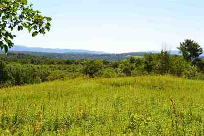 Addison County Residential Lots & Land For Sale: Snake Mountain Road