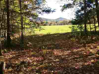 Fairlee Residential Lots & Land For Sale: Mountain Road