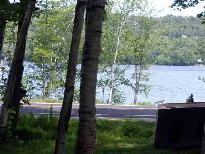 Rumney Single Family Home For Sale: 2389 Stinson Lake Road