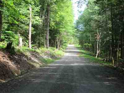 Chittenden County Residential Lots & Land For Sale: 167 Sleepy Hollow Road #2