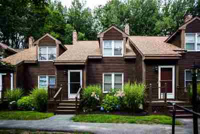 Dover Condo/Townhouse For Sale: 73 Bellamy Woods Road