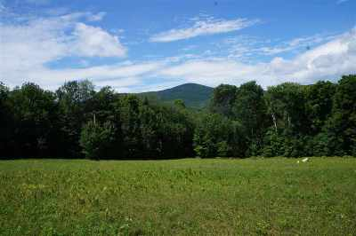 Groton Residential Lots & Land For Sale: Corner Of Route 302 And Heath Brook Road