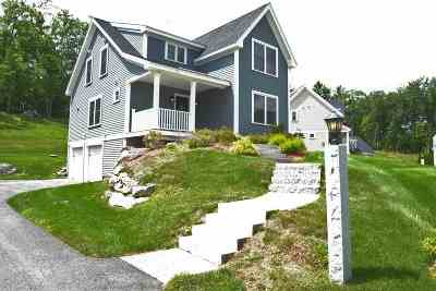 Londonderry Single Family Home For Sale: 9 Iris Lane, Old Derry Road Lane