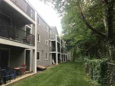 Concord Condo/Townhouse For Sale: 120 Fisherville Road #122