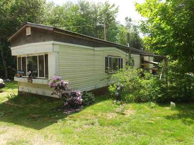 Warren Single Family Home For Sale: 44 Fish Hatchery Road