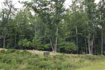 New Boston Residential Lots & Land Active Under Contract: Lot 88-10 Susan Road