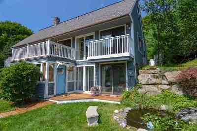 Laconia Single Family Home For Sale: 163 Eastman Shore North Road