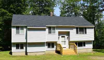 Goffstown Single Family Home For Sale: 7 Evergreen Drive
