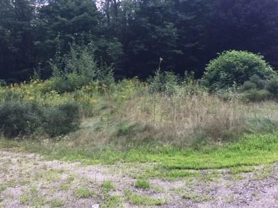 Hillsborough Residential Lots & Land For Sale: 263 Old Henniker Road