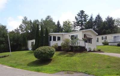 Laconia Single Family Home For Sale: 77 Dudley Circle