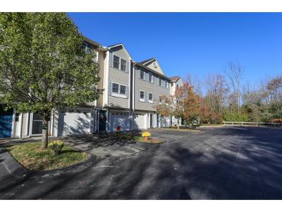Manchester Condo/Townhouse For Sale: 1029 S. Mammoth Road #29