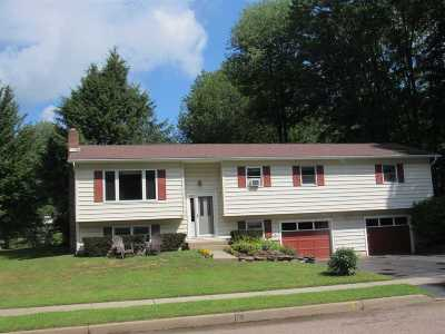 Chittenden County Single Family Home For Sale: 20 Greenwood Avenue