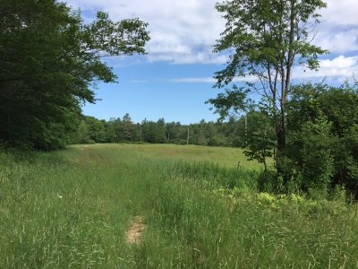 Shrewsbury Residential Lots & Land For Sale: 230 Willmouth Hill Road